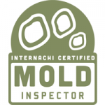 providing mold testing in greensboro and raleigh