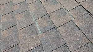 Shingles found during a Burlington, NC home inspection.